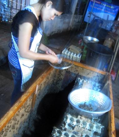 Woman Frying Bugs